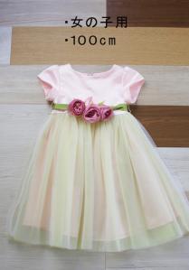 040女100ドレス