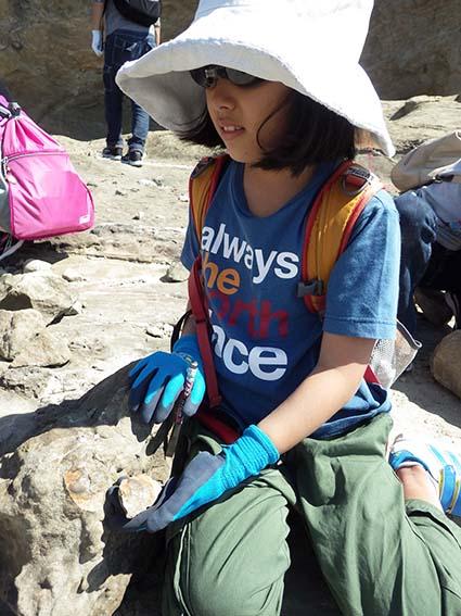 化石発掘2
