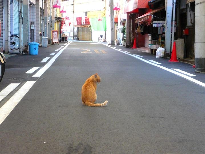 こまめ店4