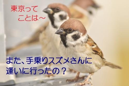010_20141201211045bf4.jpg