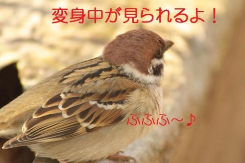 030_20141222215952105.jpg