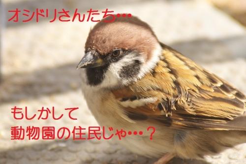 050_20141203210620cf1.jpg