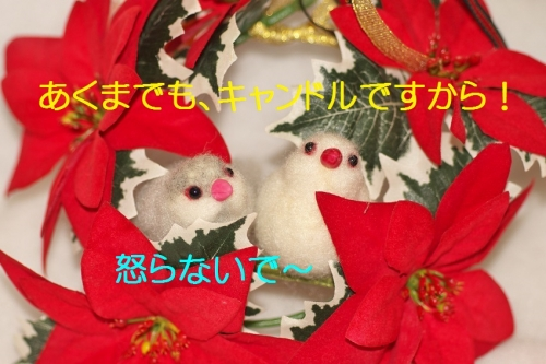 160_2014122421280081d.jpg