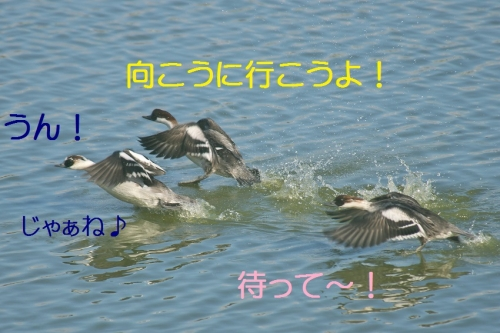 180_201412222204470b3.jpg