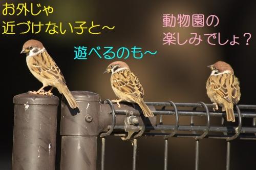 200_20141203210927a92.jpg