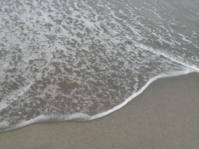 海を見に行く