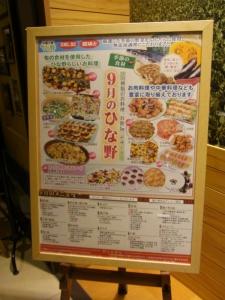 ひな野RIMG5790