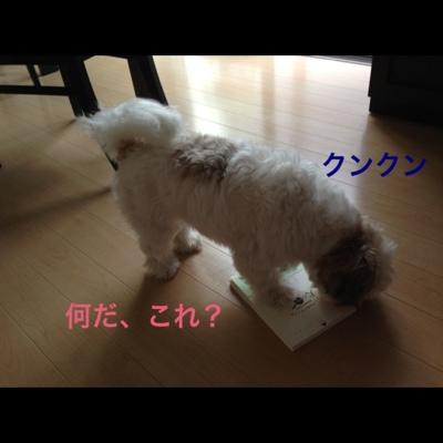 fc2blog_20130729193443985.jpg