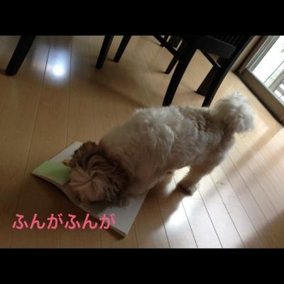 fc2blog_201307291936463ee.jpg