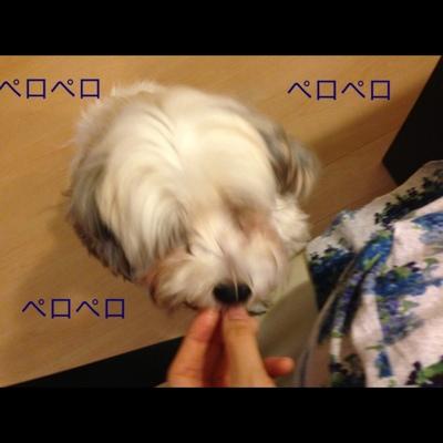 fc2blog_201308021942134a6.jpg