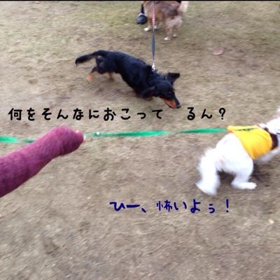 fc2blog_201310270058152e7.jpg
