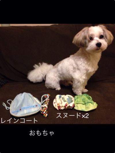 fc2blog_20131028084136c81.jpg