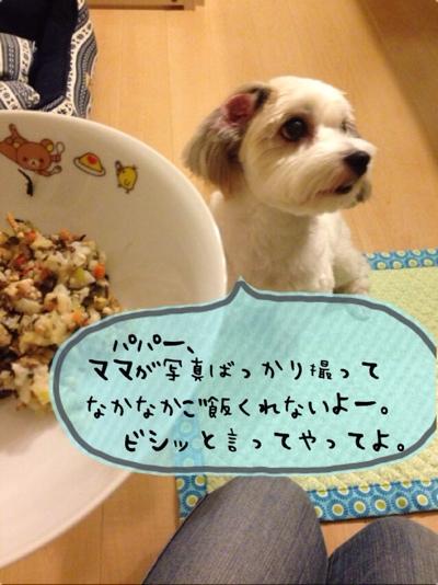fc2blog_201310281925365ca.jpg
