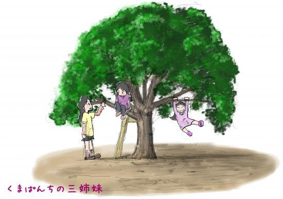 3simai_kinobori_convert_20131117142904.jpg