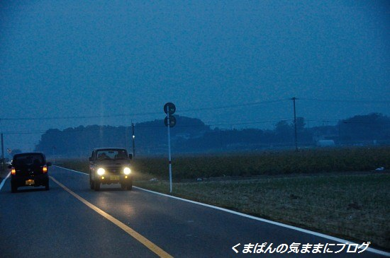 Nikon_20131102_172914.jpg