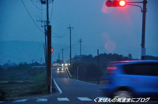 Nikon_20131102_173110.jpg