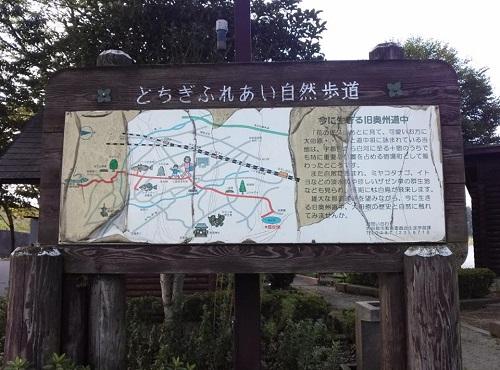 <羽田沼野鳥公園>に、寄り道④