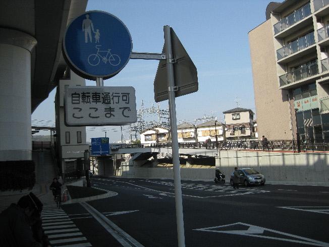 IMG_2752(1).jpg