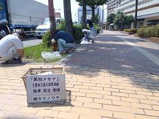 25年7月メセナ②