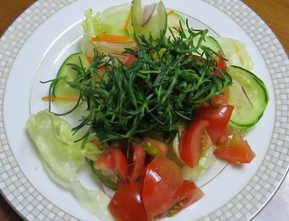 オカヒジキ野菜サラダ