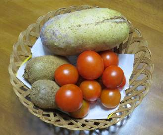 収穫された中玉トマト
