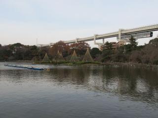 オープニングなどで度々登場する千葉公園