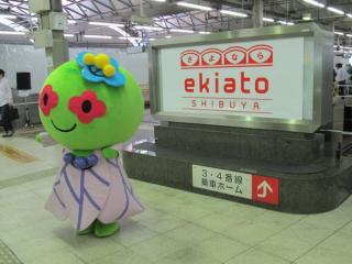 渋谷区公式キャラクター「あいりっすん」