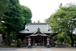 130602神奈川 荻野神社銀杏