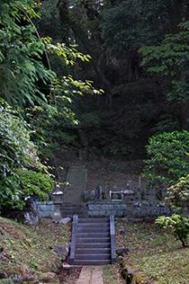 130602神奈川 松石寺の椎⑨