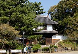 131012茨城 亀城の椎⑥
