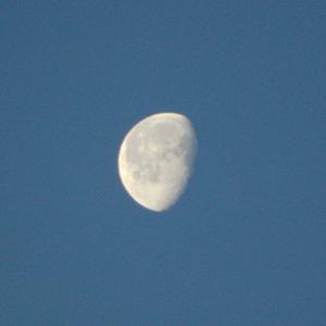 4月1日 明け方の月