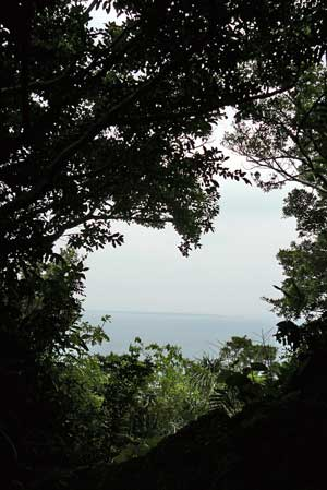 2006年12月 斎場御嶽からのぞむ久高島