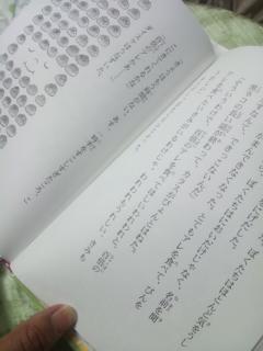 moblog_d65e59a1.jpg