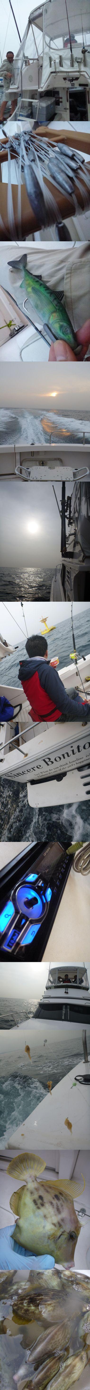 佐島でカハワギ釣り