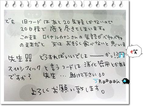 DSC_0037_20130430180032.jpg
