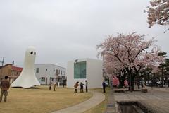 十和田官庁街と桜-6