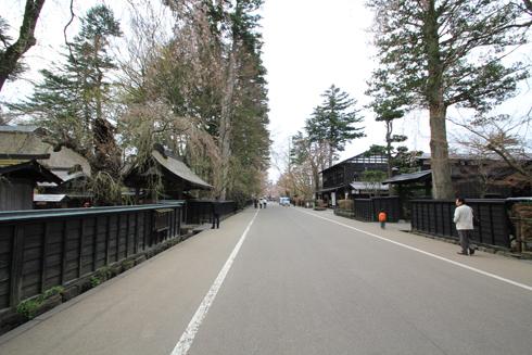角館桜2013-1