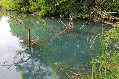 五色沼と磐梯山-8