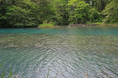 五色沼と磐梯山-10