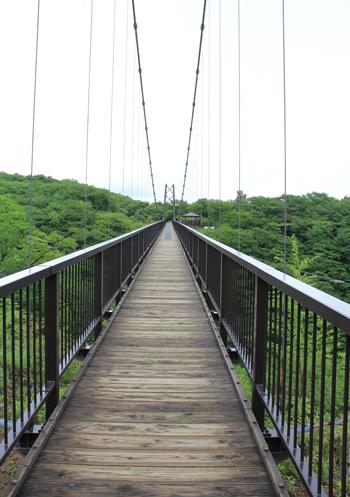 つつじ吊橋-4