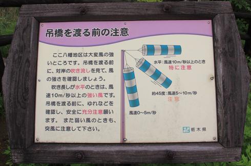 つつじ吊橋-5