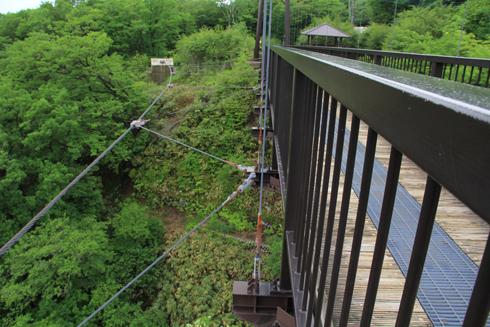 つつじ吊橋-9