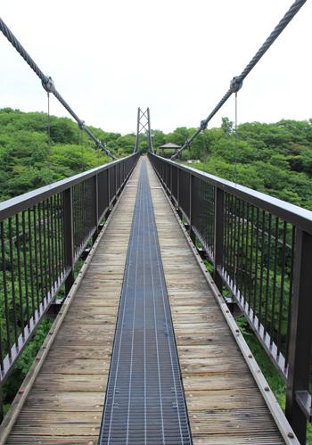 つつじ吊橋-10