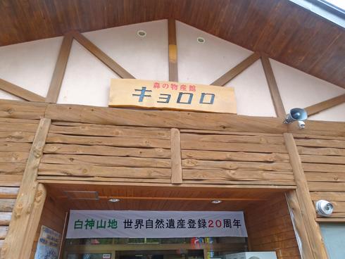 青池2013-3