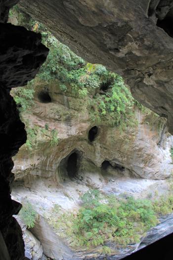 太魯閣峡谷と燕子口-7