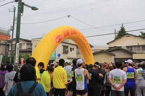 アップルマラソン2013-1
