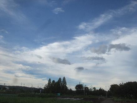 2013_09160010.jpg