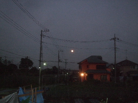 2013_09190046.jpg