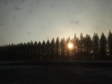 2013_11180004.jpg