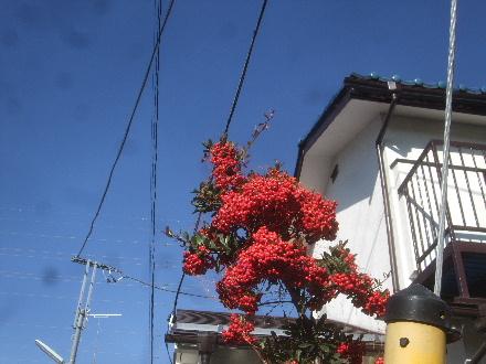 2013_11210009.jpg